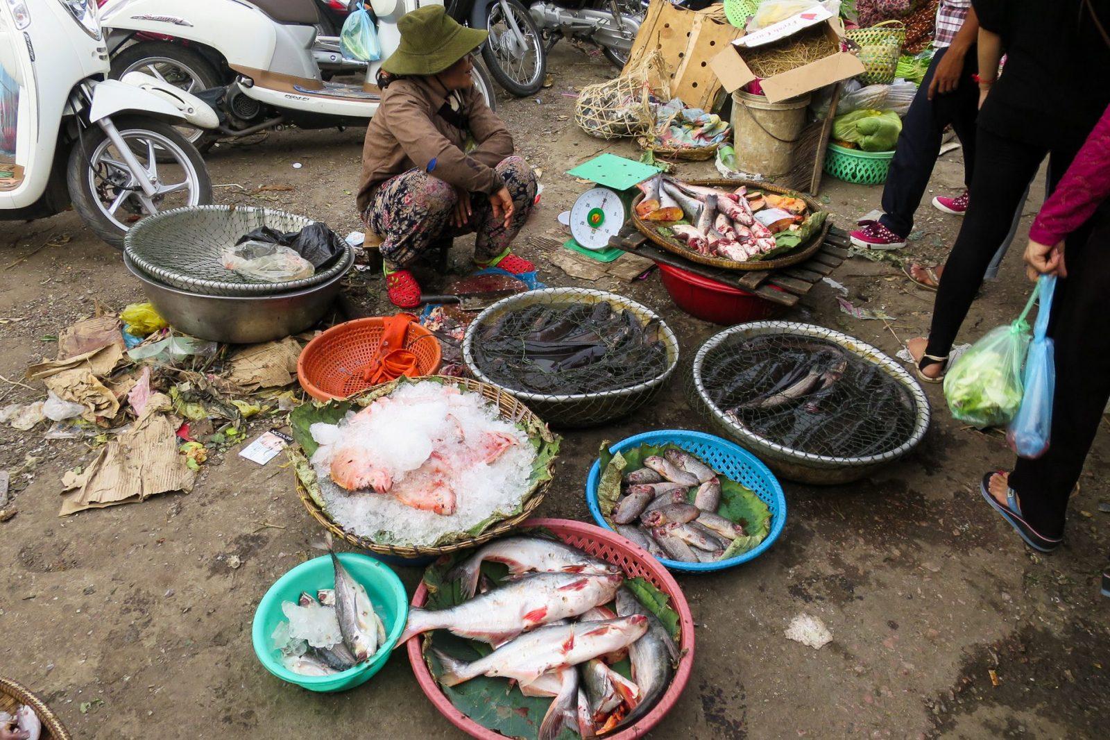 Čerstvé ryby na trhu