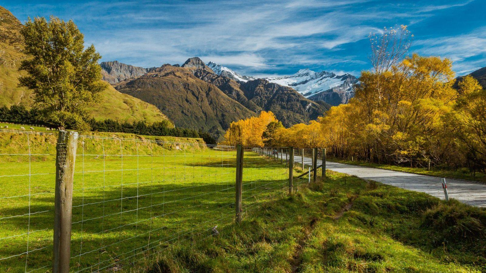 Novozélandskou krajinu jako kdyby někdo nakreslil...