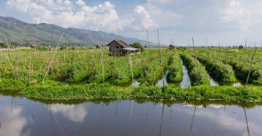 Barma 10 - Cykloprůzkum ráje vína a rajčat na březích jezera Inle