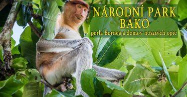 Národní park Bako, perla Bornea a domov nosatých opic