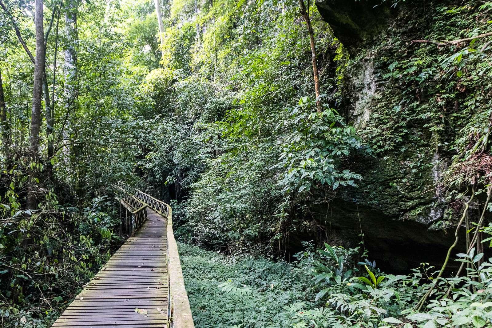 Chodník říčním lesem k jeskyním