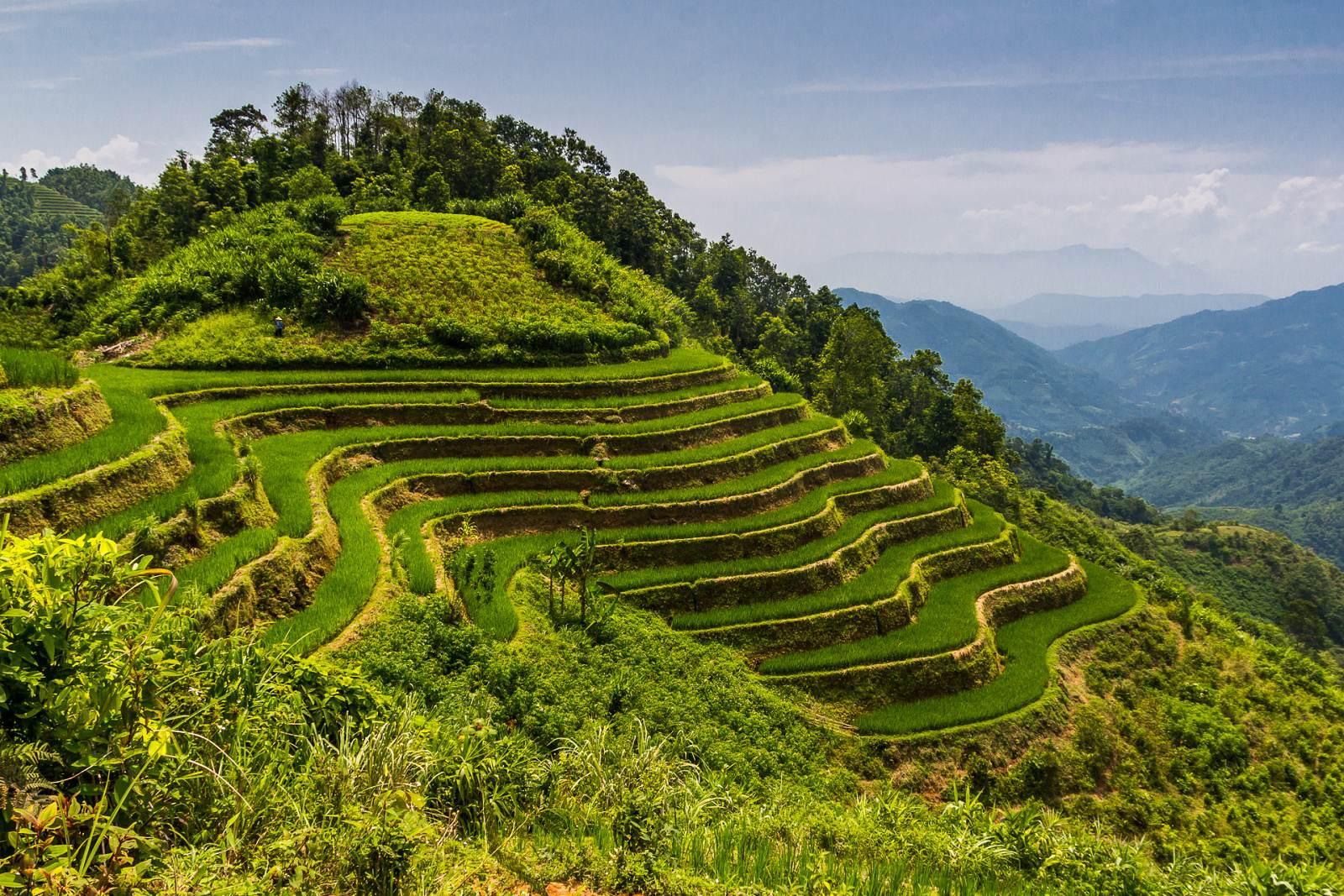 Rýžové terasy Ha Giang