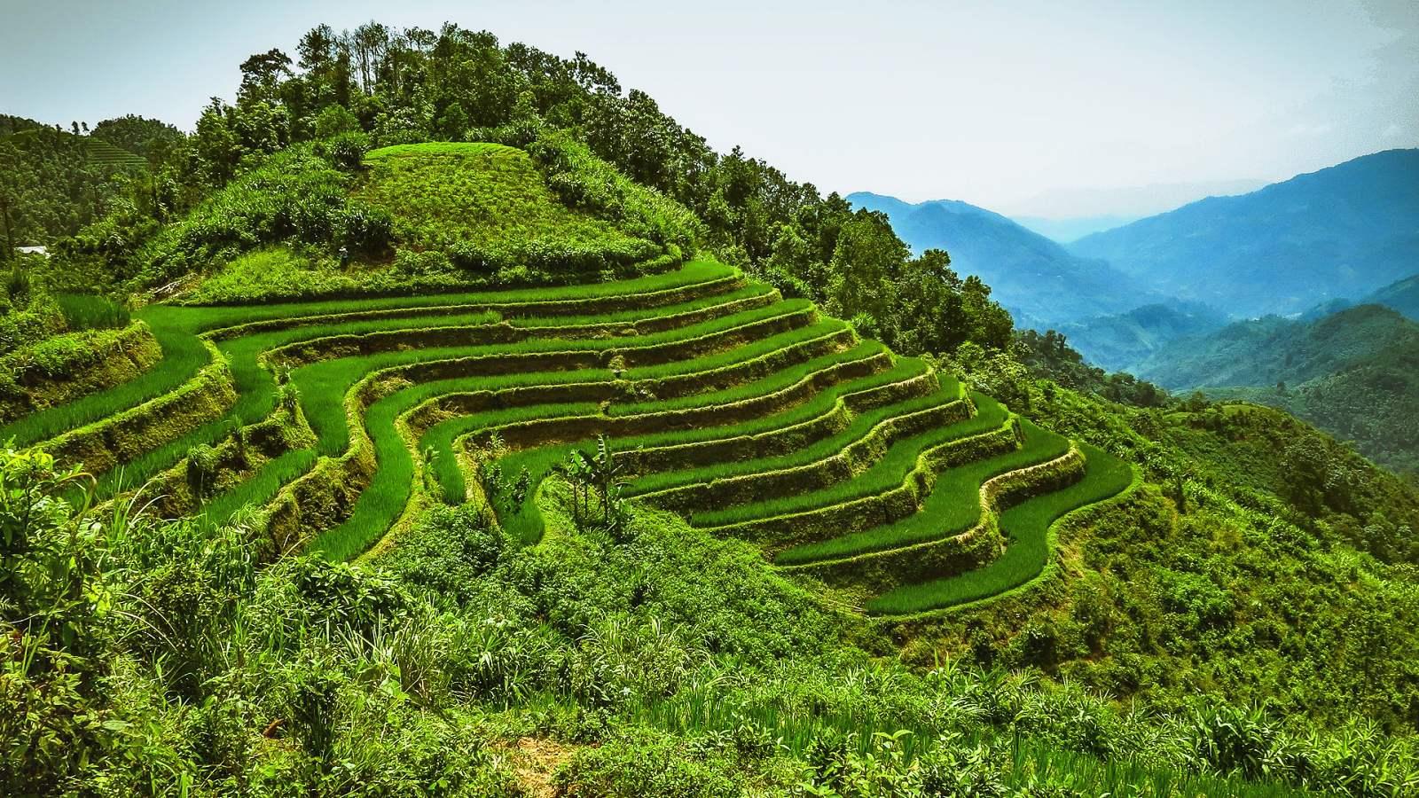 Vietnam 22 - Výlet mezi obří rýžové terasy do Hoang Su Phi