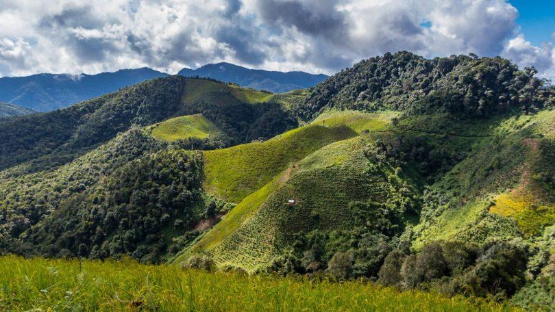 Laos 2 - Phongsali uprostřed hor, čaje a etnik