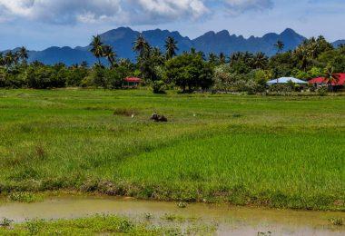 Malajsie 7 - Dohra na Langkawi a cesta na Bali