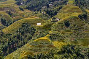 Vietnam a Laos -Od Mekongu ...k Mekongu