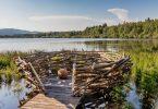 Naučná stezka Olšina – po dřevěných chodnících do lůna přírody